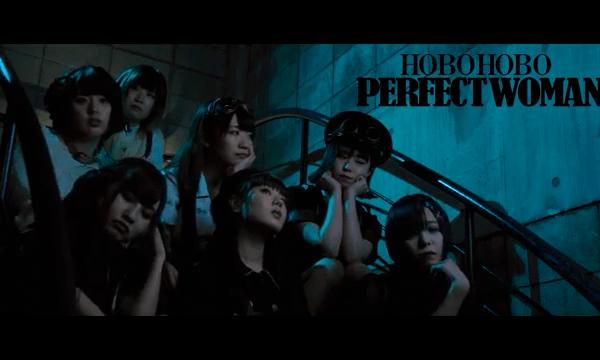 hobohoboperfect